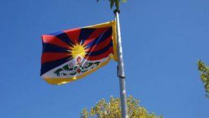 Tibetan flag flies high outside council